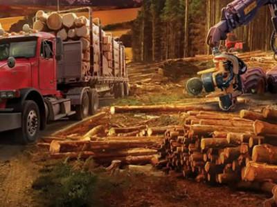 Forestry 2017 – The Simulation (2016) RePack от qoob